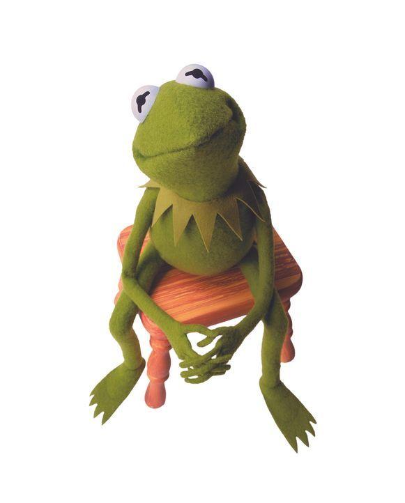 (1. Staffel) - Kermit der Frosch ist der Mittelpunkt des Muppet-Universum. Der Anführer, um den sich alles dreht ... - Bildquelle: ABC Studios