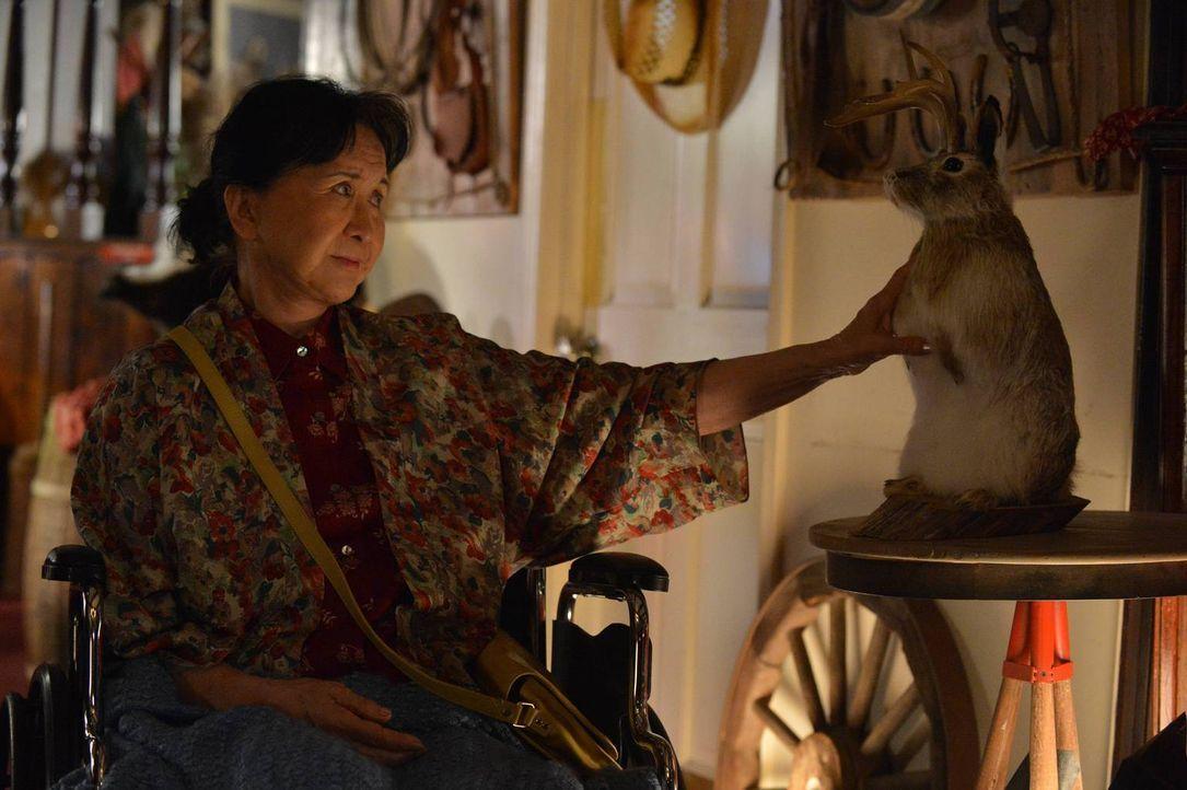 Muss sich mit einigen Schwierigkeiten in Orlando herumschlagen: Grandma Huang (Lucille Soong) ... - Bildquelle: 2015 American Broadcasting Companies. All rights reserved.