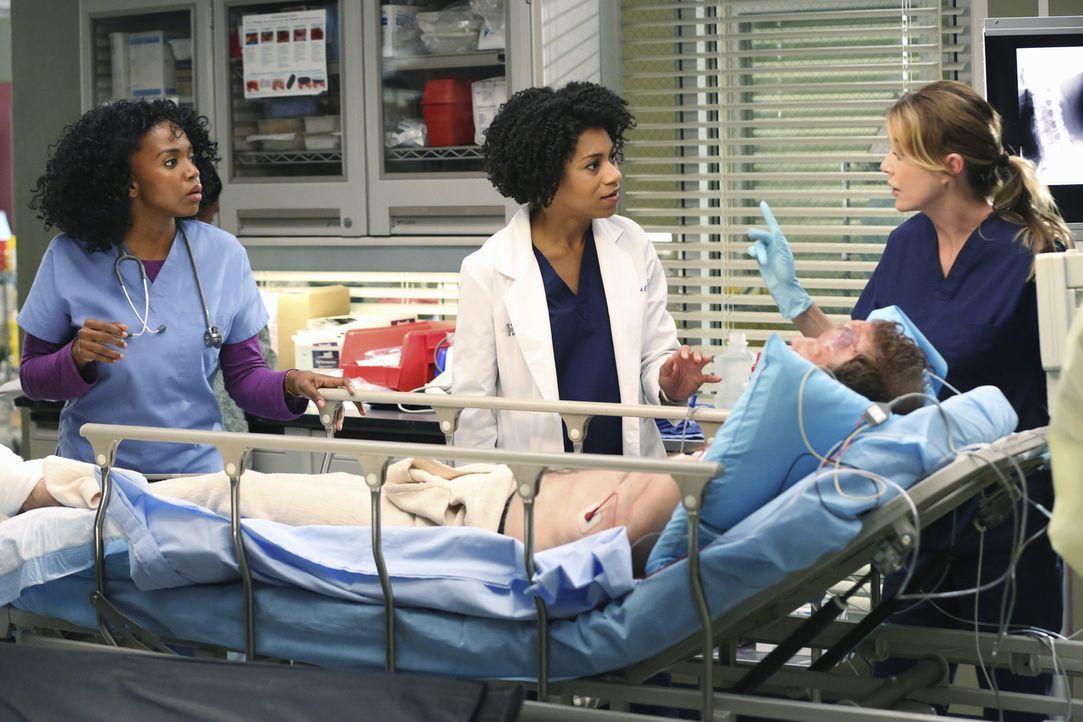 Pierce (Kelly McCreary, M.) und Meredith (Ellen Pompeo, r.) scheinen auch in Patientenfrage nicht einer Meinung zu sein, Dr. Stephanie Edwards (Jerr... - Bildquelle: ABC Studios