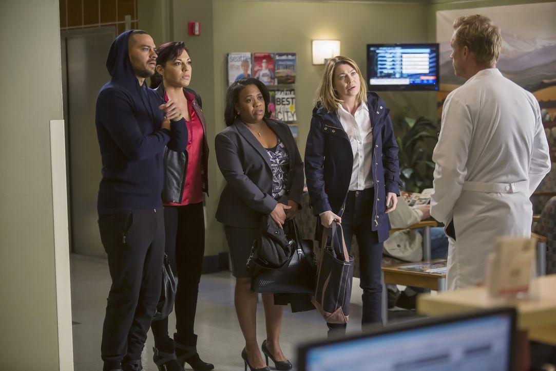 Owen (Kevin McKidd, r.) hat einen ganz besonderen Einsatz für Meredith (Ellen Pompeo, 2.v.r.), Bailey (Chandra Wilson, M.), Jackson (Jesse Williams,... - Bildquelle: Ron Batzdorff ABC Studios
