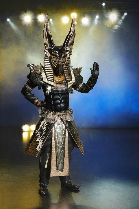Der Anubis  - Bildquelle: ProSieben / Marc Rehbeck