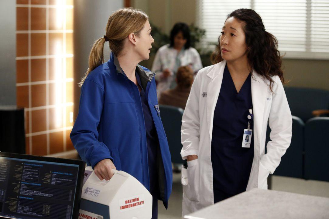 Werden mit neuen Herausforderungen konfrontiert: Meredith (Ellen Pompeo, l.) und Cristina (Sandra Oh, r.) ... - Bildquelle: ABC Studios