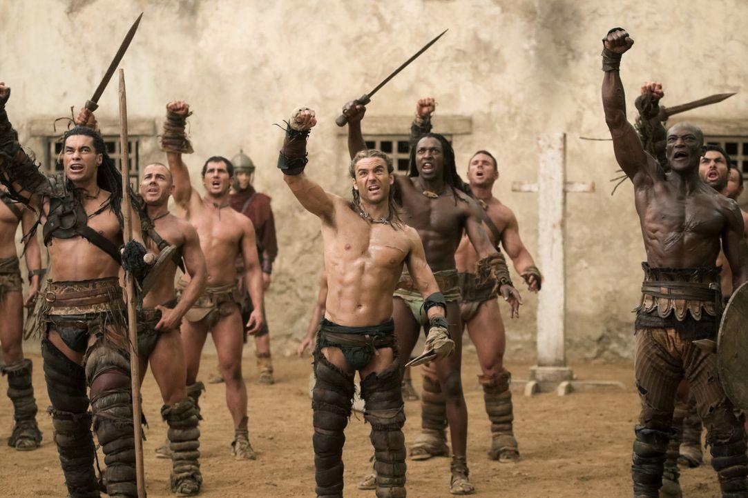 Kämpfen im Ludus von Batiatus: Barca (Antonio Te Maioha, vorne l.), Gannicus (Dustin Clare, vorne M.) und Drago (Peter Mensah, vorne r.) ... - Bildquelle: 2010 Starz Entertainment, LLC