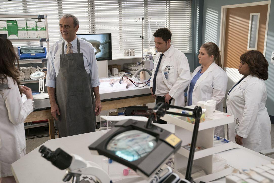 (v.l.n.r.) Dr. Vincenzo DeLuca (Lorenzo Caccialanza); Dr. Alex Karev (Justin Chambers); Dr. Taryn Helm (Jaicy Elliot); Dr. Miranda Bailey (Chandra W... - Bildquelle: Mitch Haaseth ABC Studios