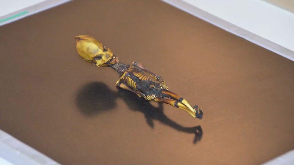 Die Ata-Mumie - Bildquelle: SiriusDisclosure.com