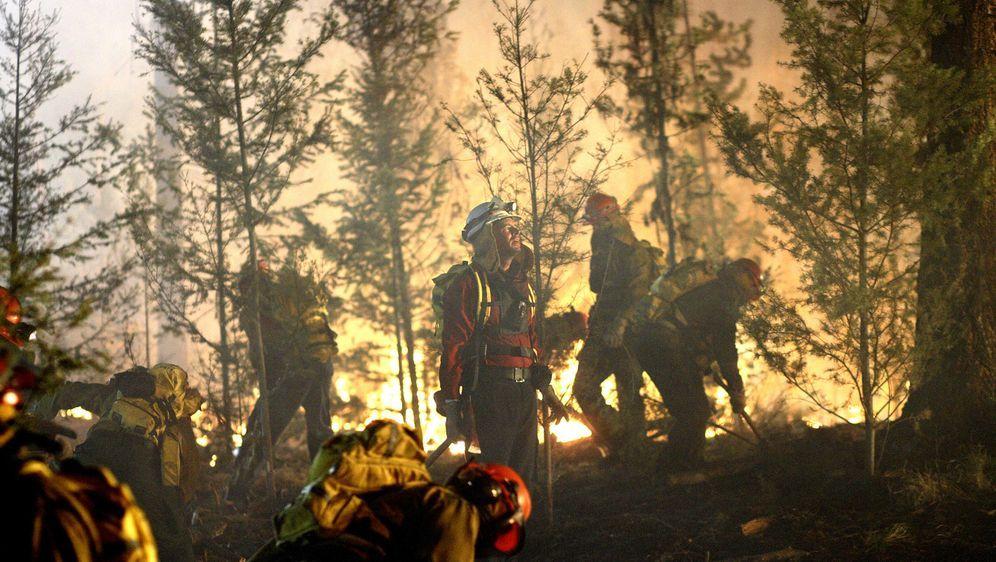 Wildfires - Lauffeuer