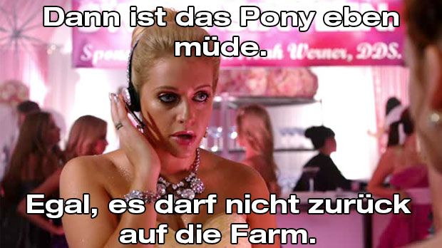 Dalia_muedes_Pony