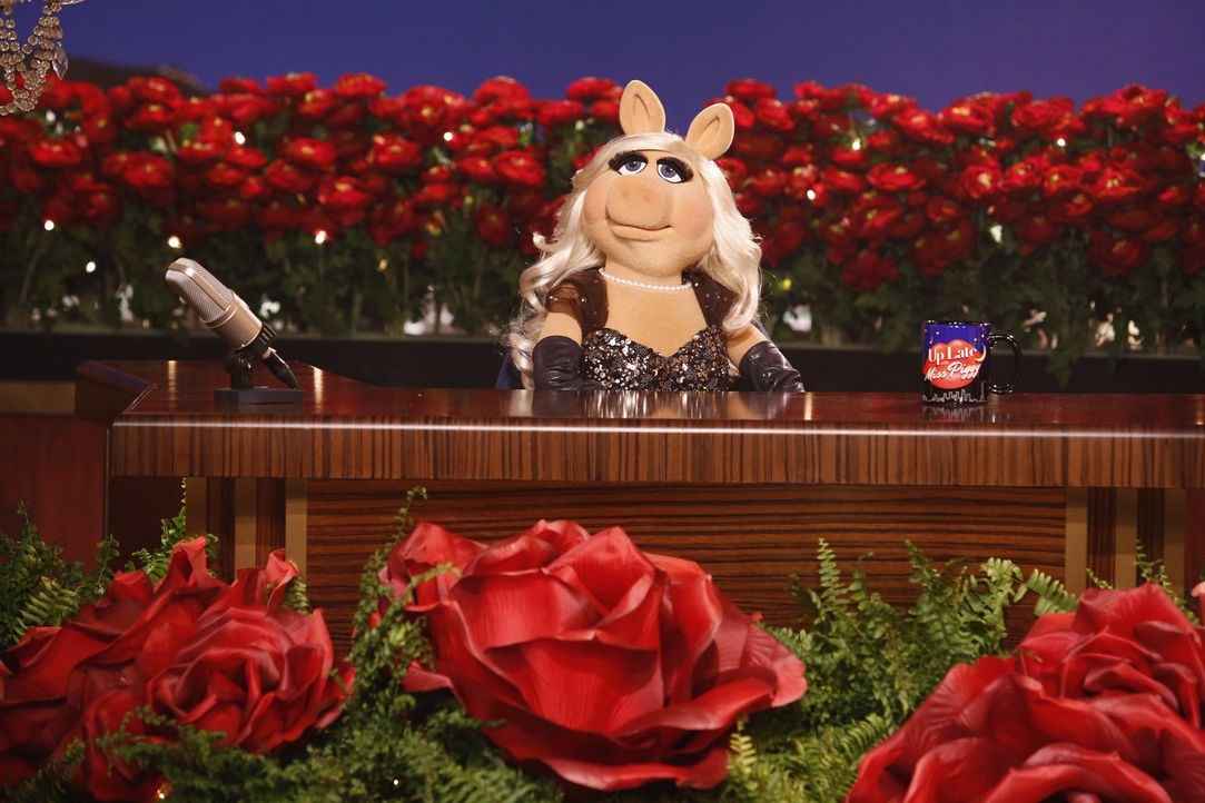 """Die vorerst letzte Ausgabe von """"Up Late with Miss Piggy"""" steht an. Bevor die Muppets in den Urlaub aufbrechen, geben sie alle ihre persönliche Meinu... - Bildquelle: Nicole Wilder ABC Studios"""