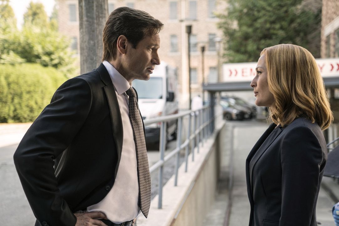 Der Tod eines Wissenschaftlers ruft Mulder (David Duchovny, l.) und Scully (Gillian Anderson, r.) auf den Plan, denn anscheinend haben ihn sonderbar... - Bildquelle: Ed Araquel 2016 Fox and its related entities.  All rights reserved.