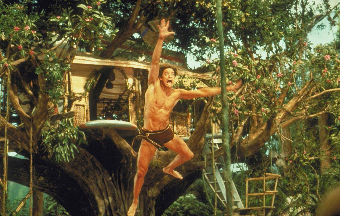 Mit den Lianen hat George (Brendan Fraser) so seine Probleme. Immer wieder stehen im Dschungel Bäume, wo sie nicht hingehören ... - Bildquelle: Disney Enterprises Inc.