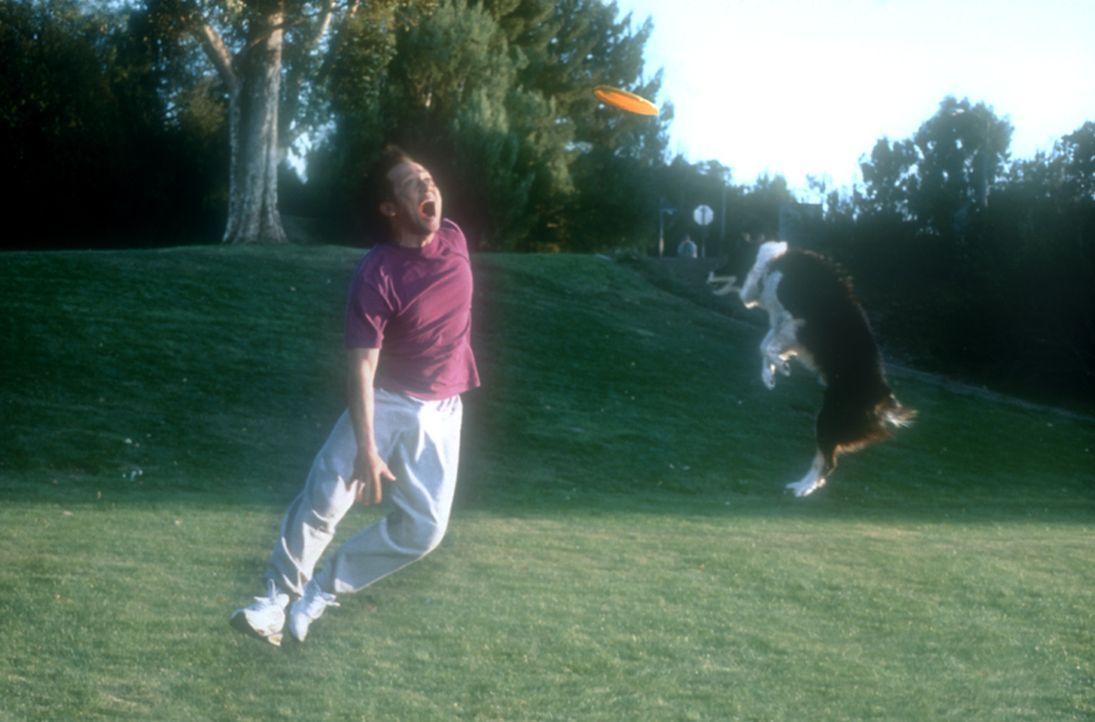 Das Tier in Marvin (Rob Schneider) fordert immer häufiger seinen Tribut. Ein harter Kampf zwischen den humanen und den animalischen Eigenschaften b... - Bildquelle: 2003 Senator Film
