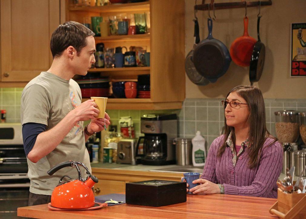 Leonard, Sheldon (Jim Parsons, l.) und Raj kämpfen um eine unbefristete Stelle an der Universität. Als sich dann noch Penny und Amy (Mayim Bialik, r... - Bildquelle: Warner Bros. Television