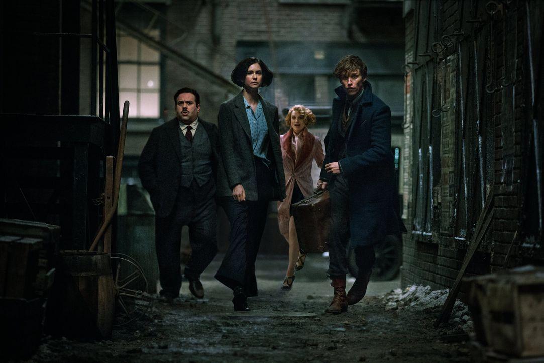 (v.l.n.r.) Jacob Kowalski (Dan Fogler); Tina Goldstein (Katherine Waterston); Queenie Goldstein (Alison Sudol); Newt Scamander (Eddie Redmayne) - Bildquelle: Warner Bros.