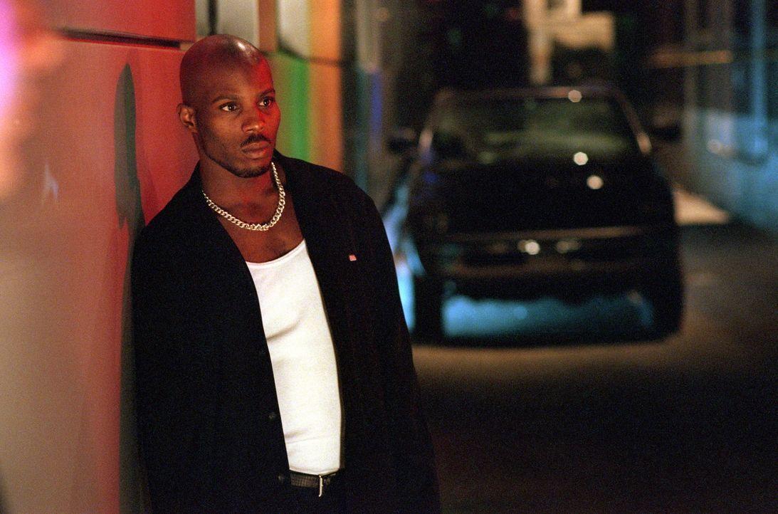 In die Drogendeals von Latrell Walker (DMX) sind sowohl Gangster als auch Cops verwickelt ... - Bildquelle: Warner Bros. Pictures