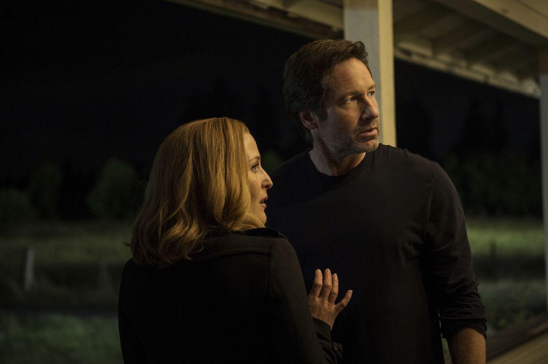 Der Fall einer angeblich häufiger von Alien entführten Frau ruft die alten Agenten Scully (Gillian Anderson, l.) und Mulder (David Duchovny, r.) wie... - Bildquelle: Ed Araquel 2016 Fox and its related entities.  All rights reserved.