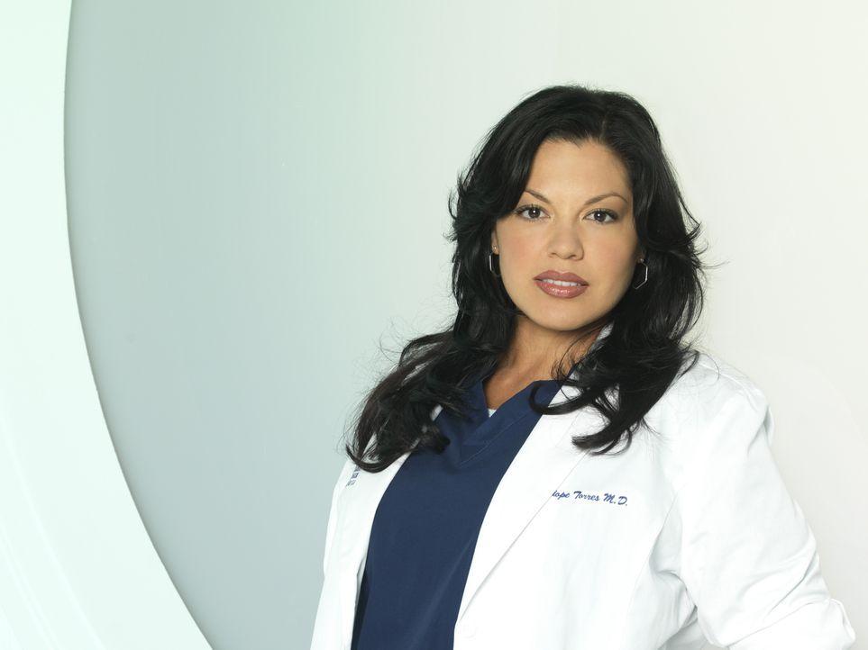 (7. Staffel) - Als Ärztin muss Dr. Callie Torres (Sara Ramirez) täglich mit neuen Überraschungen rechnen ... - Bildquelle: Bob D'Amico 2010 American Broadcasting Companies, Inc. All rights reserved. / Bob D'Amico