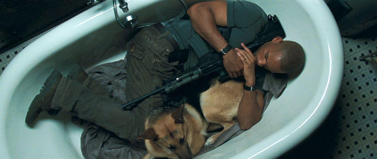 Sie jagen bei Tag und verstecken sich in der Nacht: Dr. Robert Neville (Will Smith) und sein Schäferhund sind die mutmaßlich einzigen Überlebende... - Bildquelle: Warner Brothers International