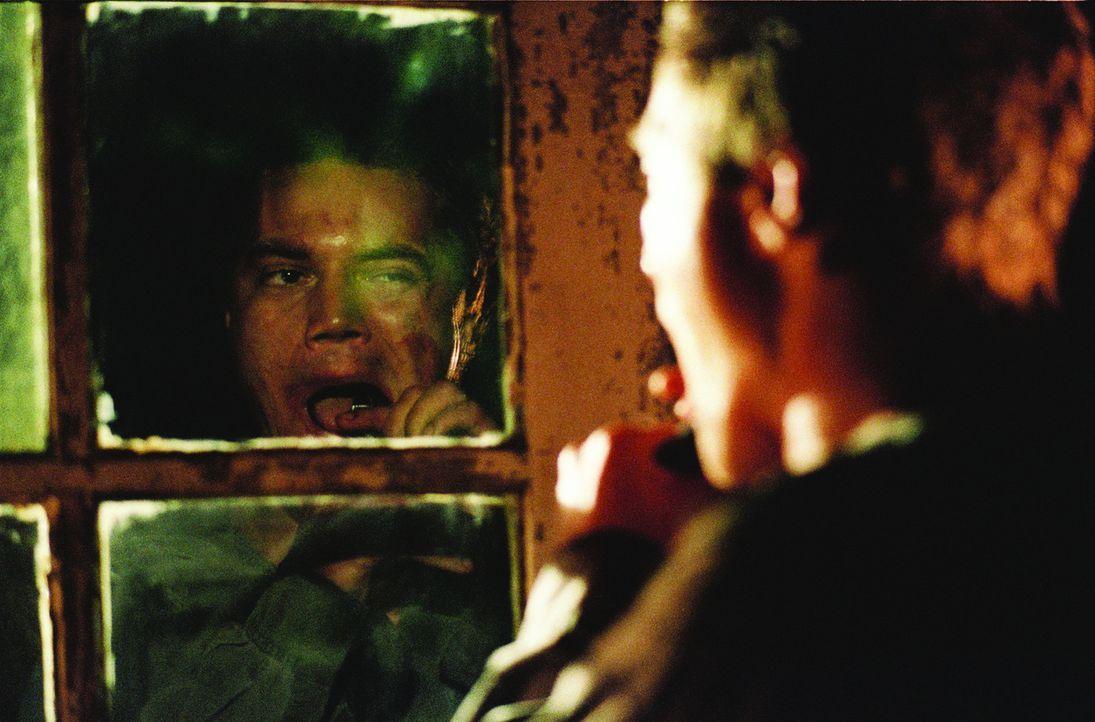 Kriegsveteran Peter (Michael Shannon) ist davon überzeugt, dass das Militär Insekten manipuliert, die ihn jetzt heimsuchen ...