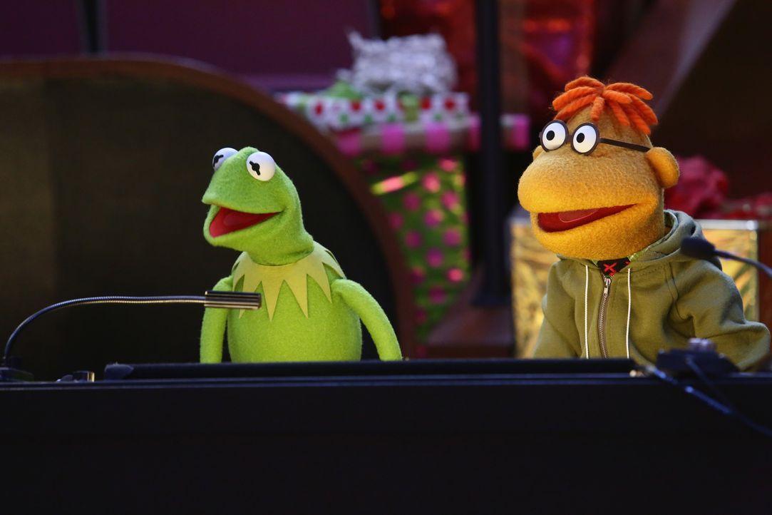 """Hoffen, dass die Sonderausgabe von """"Up Late with Miss Piggy"""" zu Weihnachten ohne Probleme über die Bühne geht: Kermit (l.) und Scooter (r.) ... - Bildquelle: Nicole Wilder ABC Studios"""