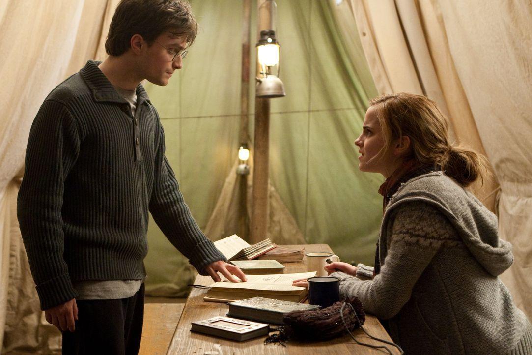 Gemeinsam machen sie sich auf die Suche nach den verlorenen Teilen von Voldemorts Seele, immer darauf bedacht, von dem dunklen Lord und seinen Handl... - Bildquelle: 2010 Warner Bros.
