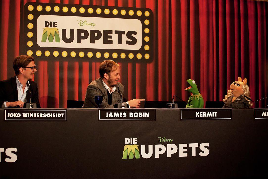 muppets-pressekonferenz-berlin-09-hanna-boussouar-walt-disney-companyjpg 1900 x 1267 - Bildquelle: Hanna Boussouar/Walt Disney Company