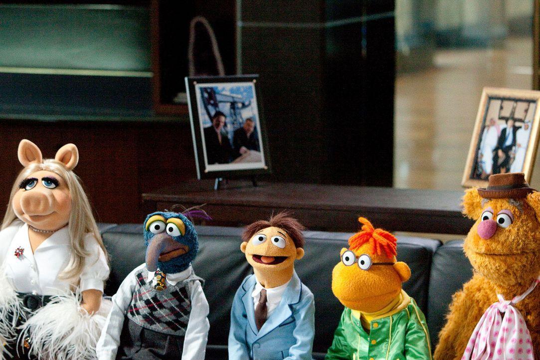 muppets-09-disney-enterprises-incjpg 1900 x 1267 - Bildquelle: Disney Enterprises Inc.
