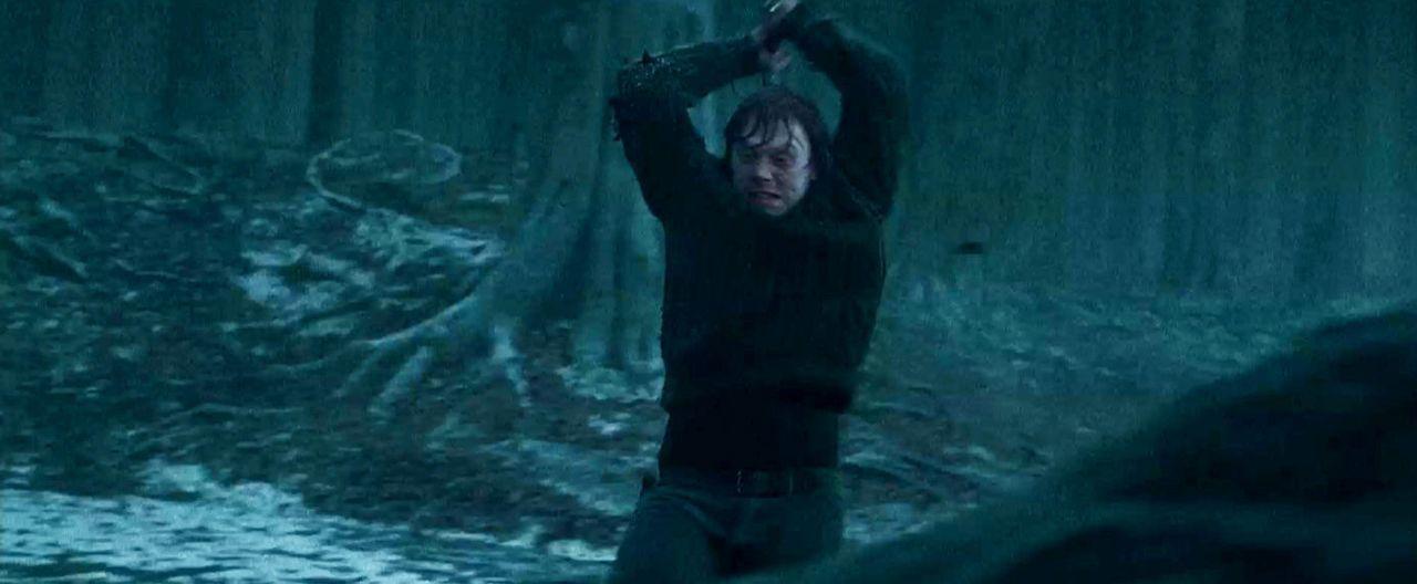 harry-potter-u-d-heiligtuemer-d-todes1-3d-15-warner-bros-entjpg 1386 x 572 - Bildquelle: 2010 Warner Bros. Ent.  Harry Potter Publishing Rights J.K.R.