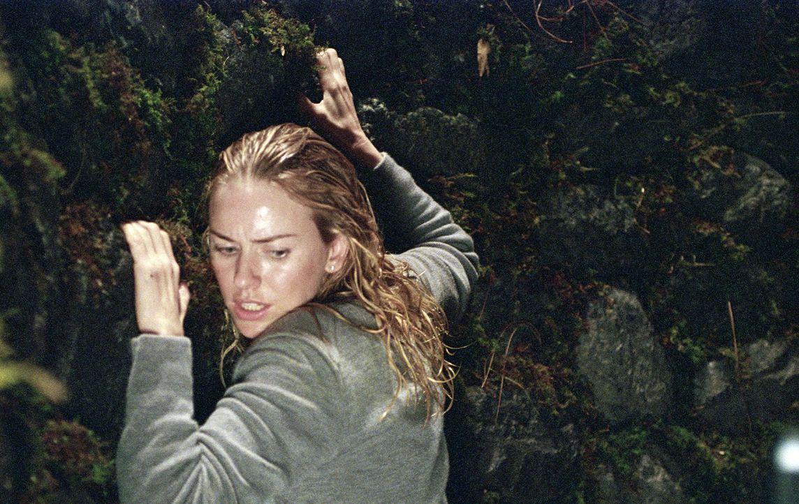 Im Visier des Grauens: Rachel (Naomi Watts) ... - Bildquelle: DreamWorks SKG