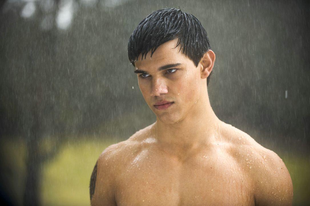 Nachdem Edward Forks verlassen hat, werden Bella und Jacob Black (Taylor Lautner) gute Freunde. Doch dann erfährt der Junge, dass er ein direkter N... - Bildquelle: 2009 Concorde Filmverleih GmbH