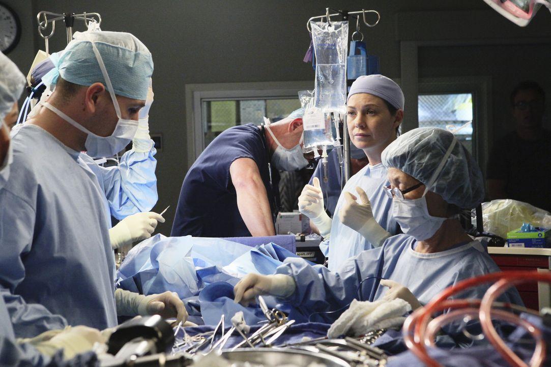Versucht alles um Leben zu retten: Meredith (Ellen Pompeo, 2.v.r.) ... - Bildquelle: ABC Studios