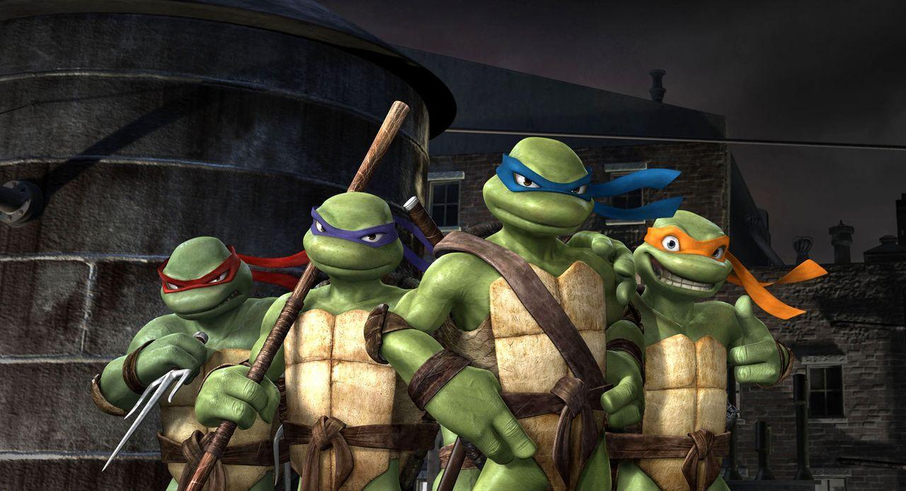Im Kampf gegen das Böse bestehen Leonardo, der Anführer (3. v. l.), Donatello, der Denker (2. v. l.), Raphael, der Draufgänger (1. v. l.), und Mi... - Bildquelle: TOBIS Filmkunst GmbH