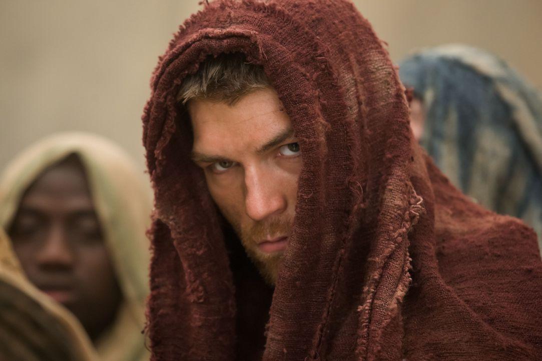 Als Glaber vor den Einwohner von Capua eine Rede hält, mischt sich Spartacus (Liam McIntyre) unter das Volk. Doch als dabei die gequälte Aurelia z... - Bildquelle: 2011 Starz Entertainment, LLC. All rights reserved.