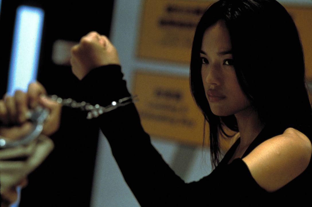 Der letzte Einsatz als Profikillerin scheint auch der letzte Tag ihres Lebens zu werden: Lynn (Shu Qi) ... - Bildquelle: Sony Pictures Television International. All Rights Reserved.