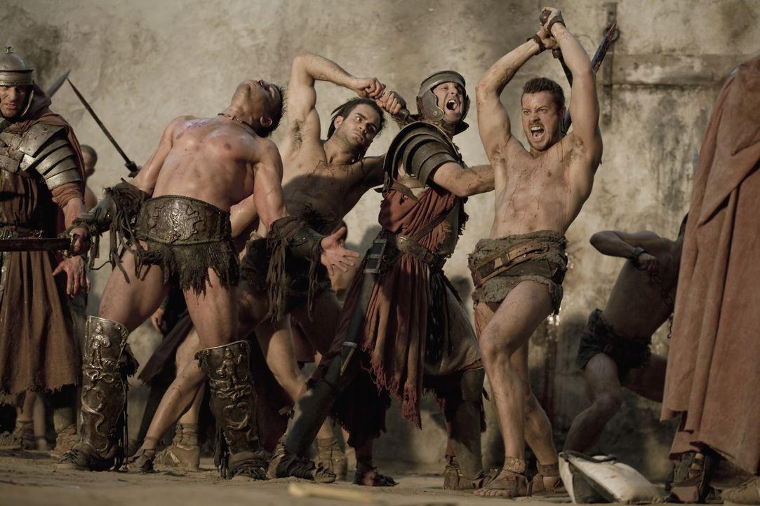 Treten zum Rachefeldzug gegen Batiatus an: Spartacus und seine Gladiatoren Crixus (Manu Bennett, 2.v.l.), Agron (Daniel Feuerriegel, r.) und Duro (A... - Bildquelle: 2010 Starz Entertainment, LLC