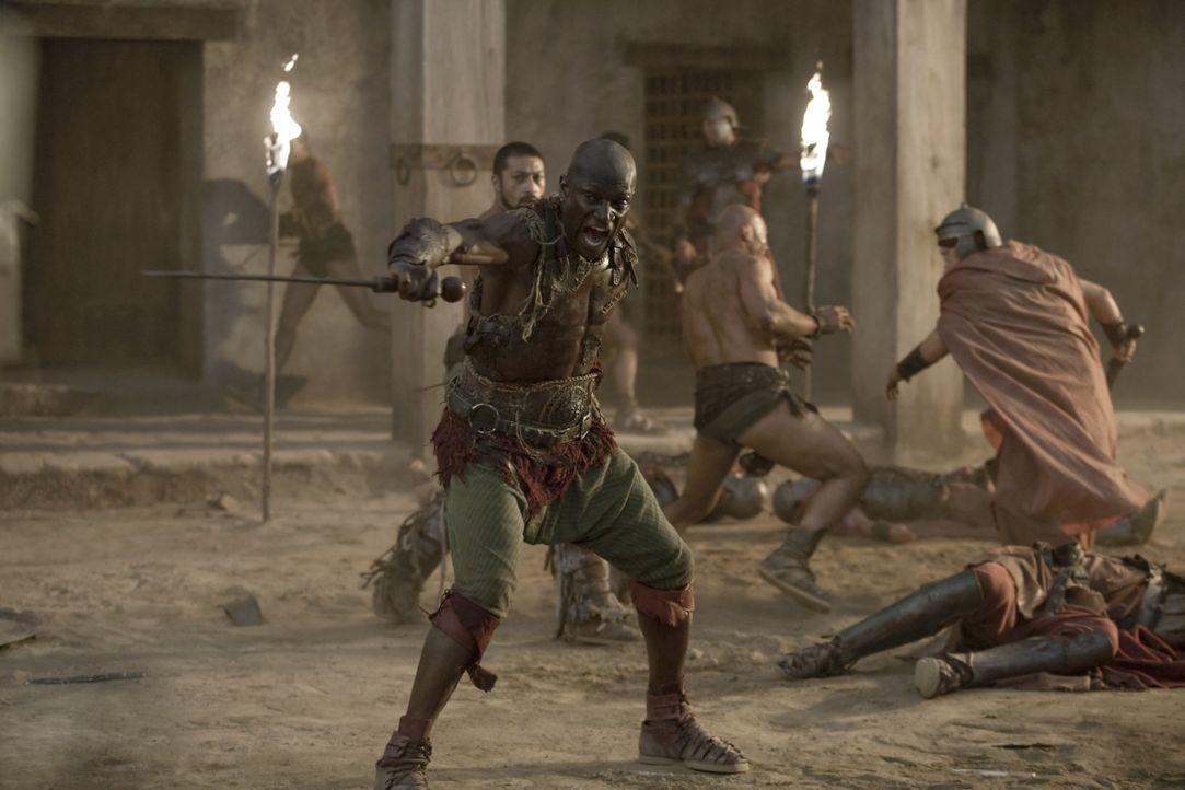 Gemeinsam mit Drago (Peter Mensah) und den anderen Gladiatoren rächt sich Spartacus für die erlittenen Qualen und Verluste blutig ... - Bildquelle: 2010 Starz Entertainment, LLC