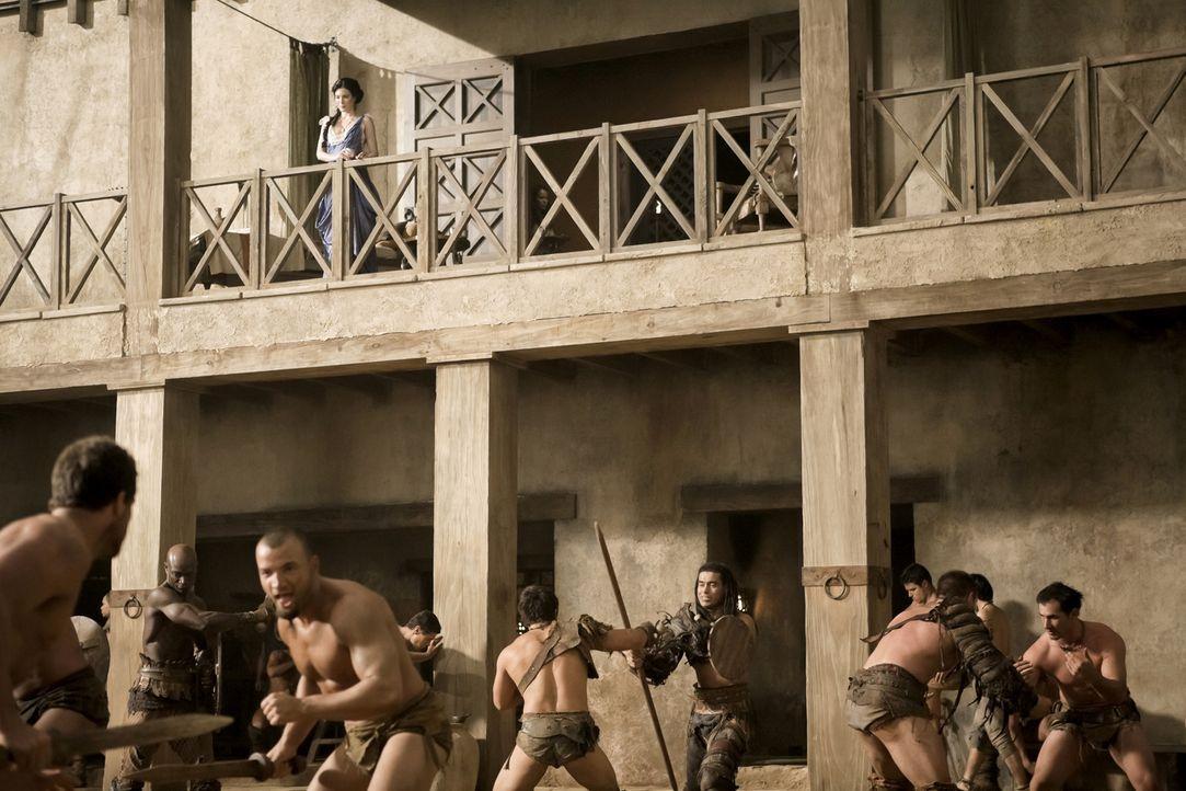 Training der Gladiatoren ... - Bildquelle: 2010 Starz Entertainment, LLC