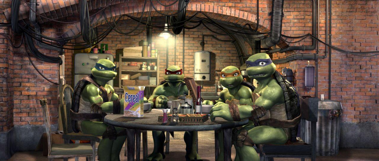 Die mutierten, sprechenden Schildkröten mit den italienischen Namen: Leonardo (l.), Raphael (2. v. l.), Michelangelo (2. v. r.) und Donatello (r.)... - Bildquelle: TOBIS Filmkunst GmbH