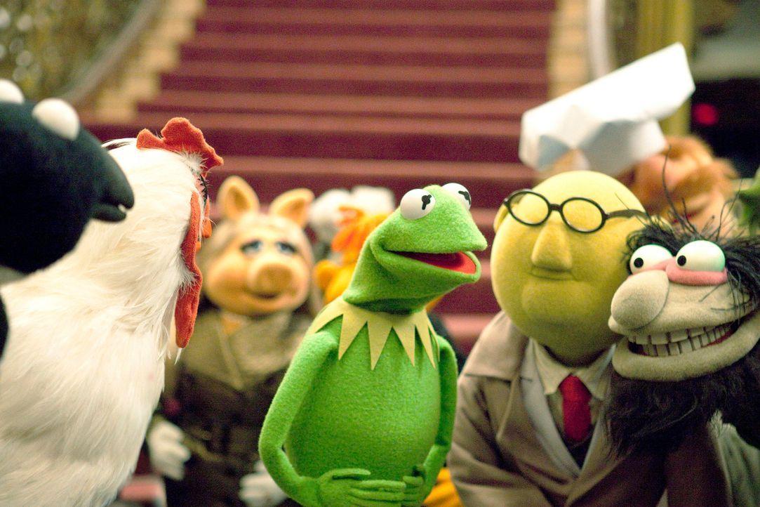 Um die Muppets-Studios vor dem Abbruch zu bewahren, plant Kermit (2.v.l.) gemeinsam mit all seinen Freunden das Comeback des Jahres ... - Bildquelle: The Muppets Studio, LLC. All rights reserved