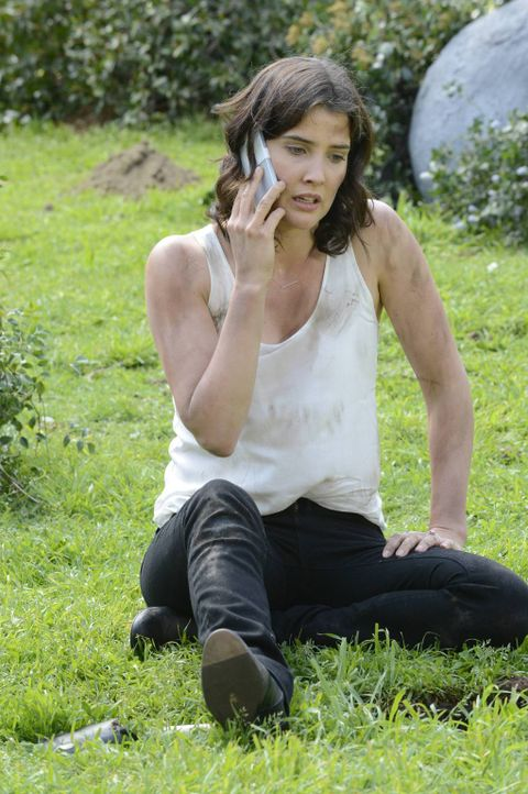 Robin (Cobie Smulders) möchte unbedingt finden, was sie vor Jahren für ihre Hochzeit im Central Park vergraben hat, um es für den üblichen Brauch al... - Bildquelle: 2013 Twentieth Century Fox Film Corporation. All rights reserved.
