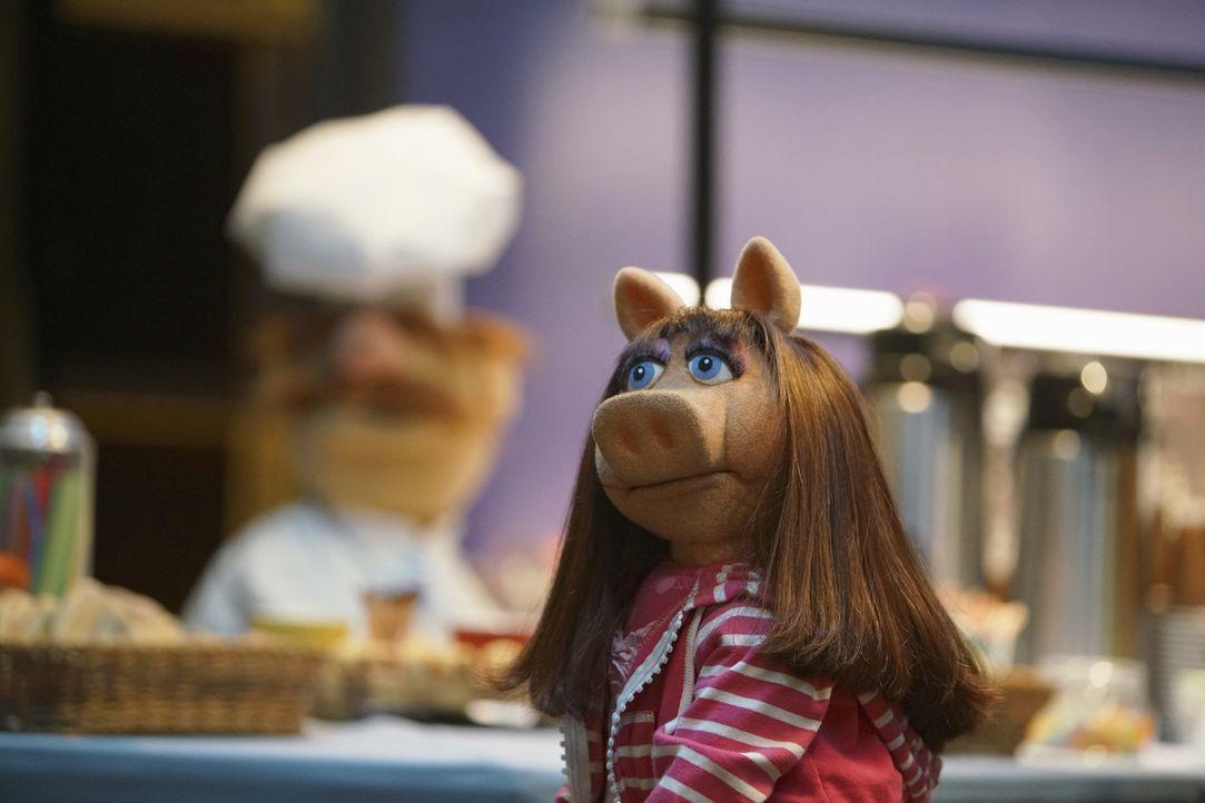 Kann Alinda Miss Piggy wieder aufmuntern? - Bildquelle: Andrea McCallin ABC Studios