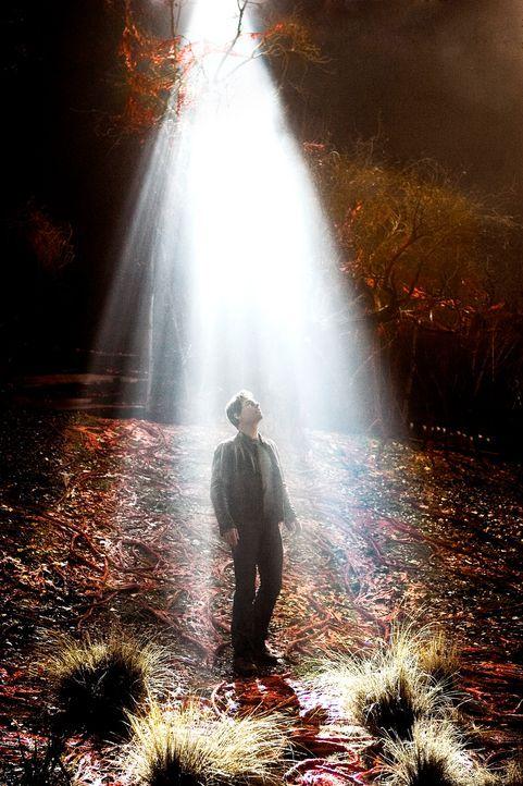Ray Ferrier (Tom Cruise) traut seinen Augen nicht: Ein regelrechtes Blitzgewitter saust auf die Erde nieder und schlägt riesige Krater in den Asphal... - Bildquelle: 2004 Paramount Pictures All Rights Reserved.