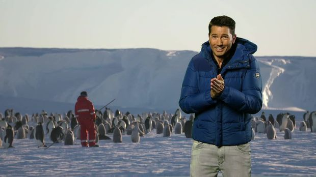 Galileo - Galileo - Freitag: Was Macht Eigentlich Ein Pinguinforscher?