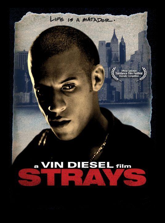 STRAYS - LEBE DEIN LEBEN - Plakatmotiv