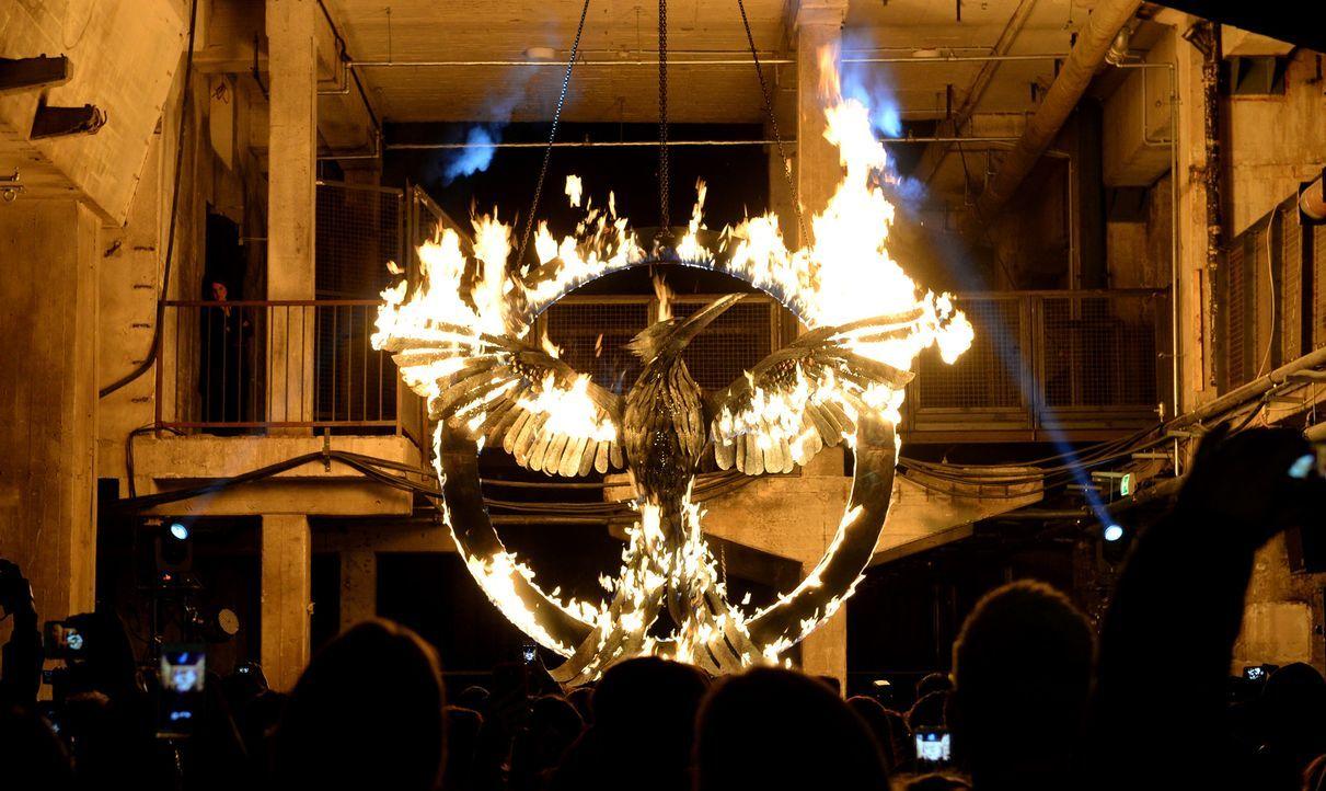 Symbol-Mockingjay-14-11-11-Berlin-dpa - Bildquelle: dpa