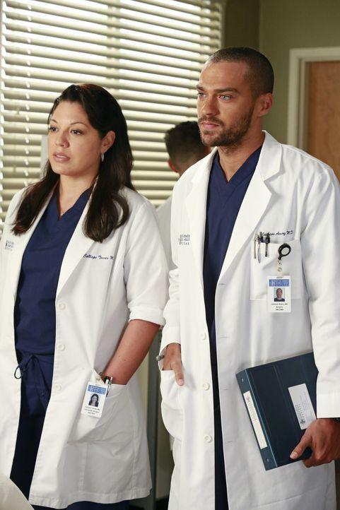 Versuchen, Derek zu einer riskanten Operation zu überreden, die seine Hand wieder funktionsfähig machen könnte: Callie (Sara Ramirez, l.) und Jac... - Bildquelle: ABC Studios
