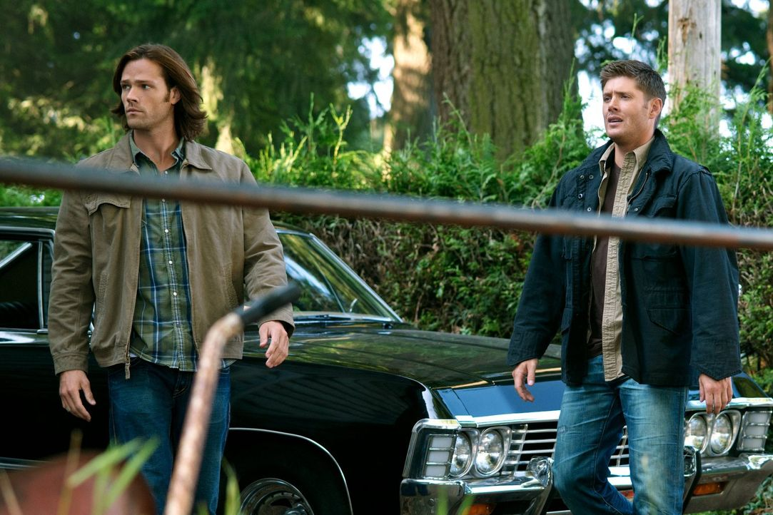 Während Dean (Jensen Ackles, r.) im Fegefeuer ums Überleben kämpft, versucht Sam (Jared Padalecki, l.), ein normales Leben zu führen ... - Bildquelle: Warner Bros. Television