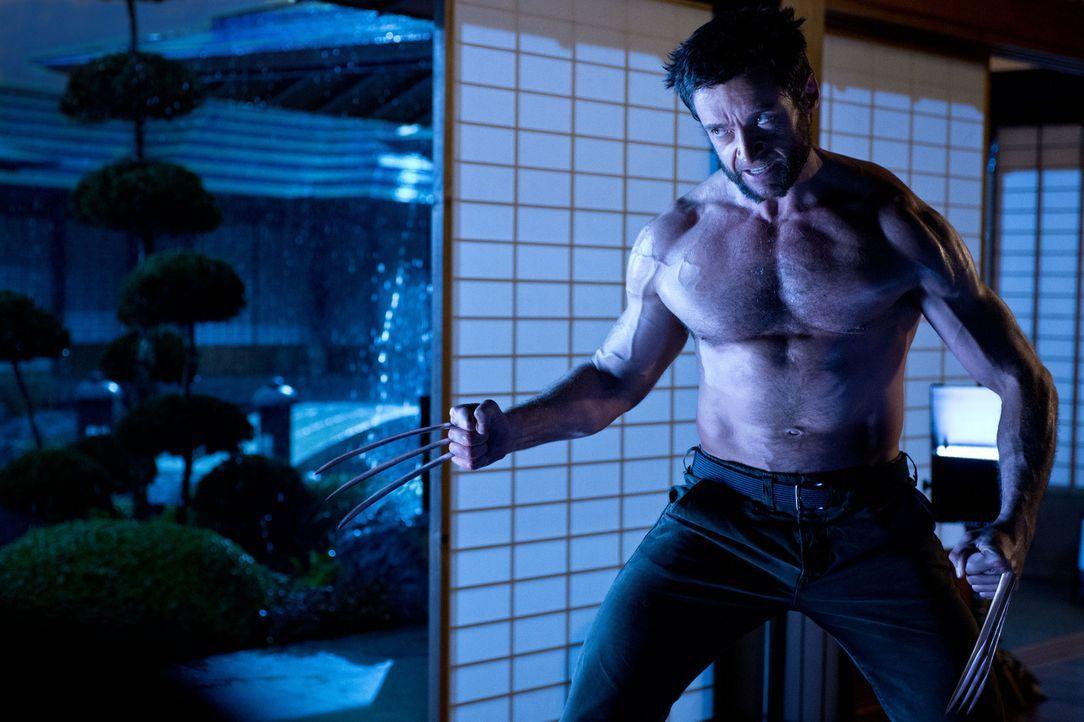 In Japan trifft der eigentlich unsterbliche Wolverine (Hugh Jackman) auf seinen größten Erzfeind, und es kommt zu einem Kampf auf Leben und Tod, der... - Bildquelle: Ben Rothstein 2013 Twentieth Century Fox Film Corporation. All rights reserved.