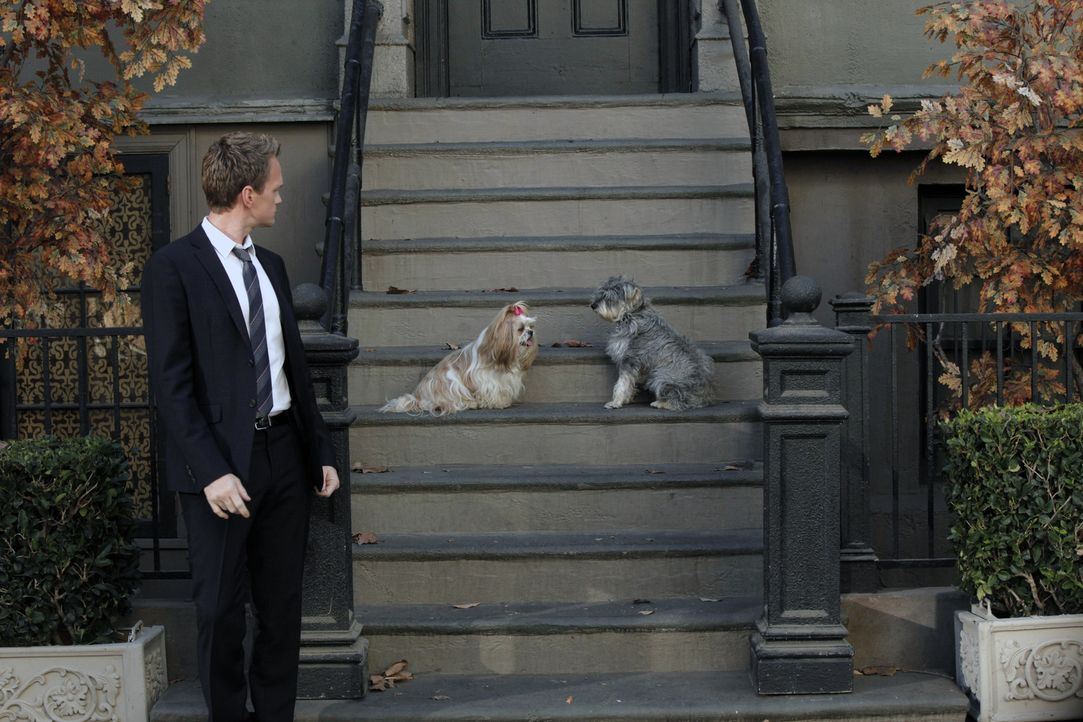 Möchte einen Hund zu seinem Begleiter beim Frauenaufreißen machen: Barney (Neil Patrick Harris) ... - Bildquelle: 2012 Twentieth Century Fox Film Corporation. All rights reserved.