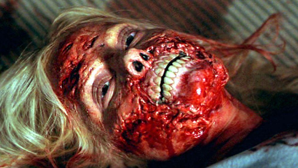 Cabin Fever - Bildquelle: Tiberius Film