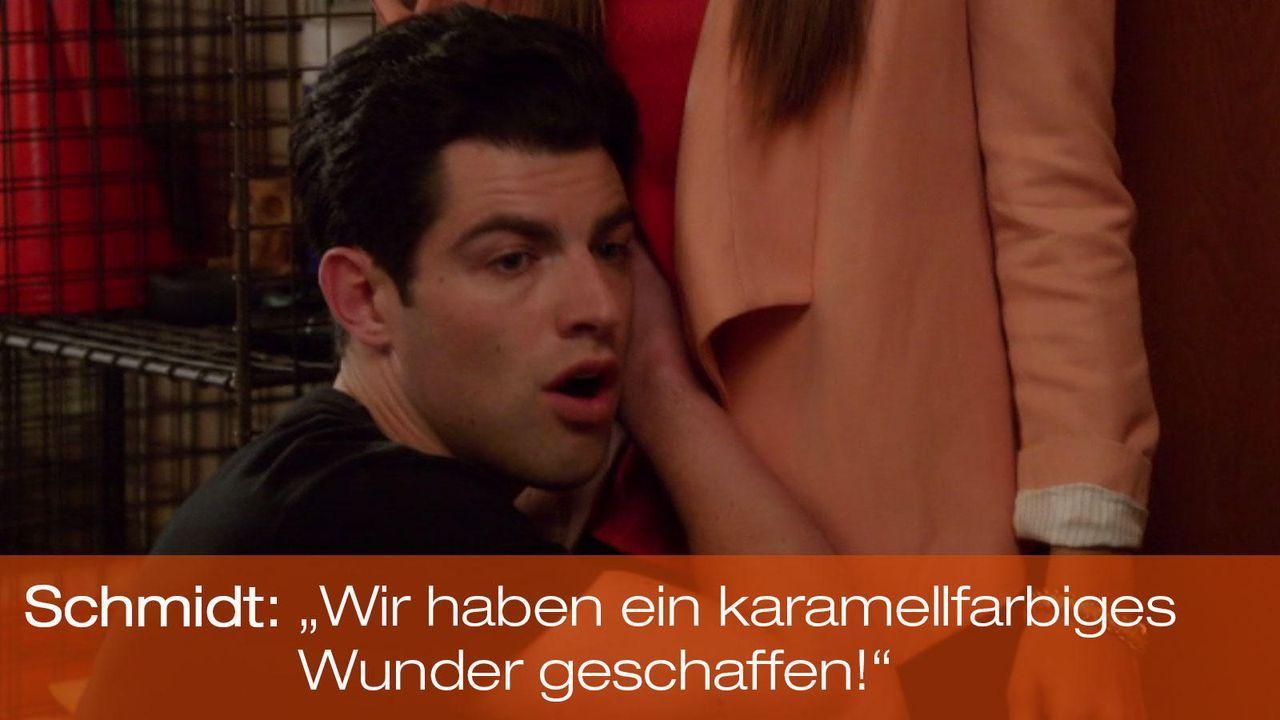 New Girl - Zitate - Staffel 1 Folge 21 - Schmidt (Max Greenfield) - Bildquelle: 20th Century Fox